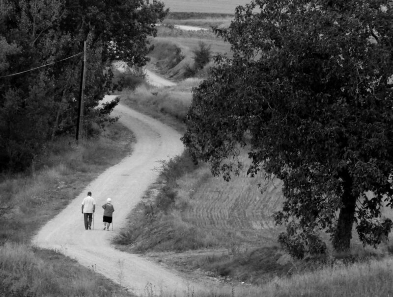 Carreras con corredores que no corren