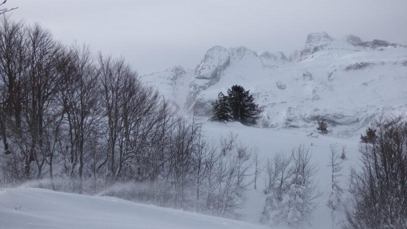 Con v de nieve
