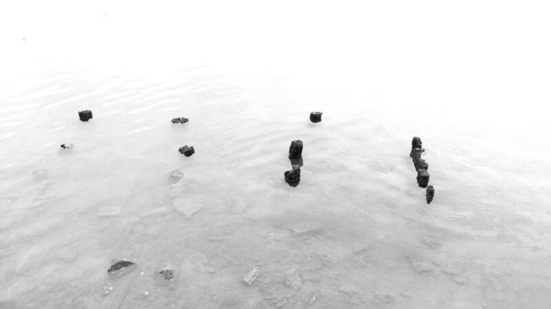 La marea